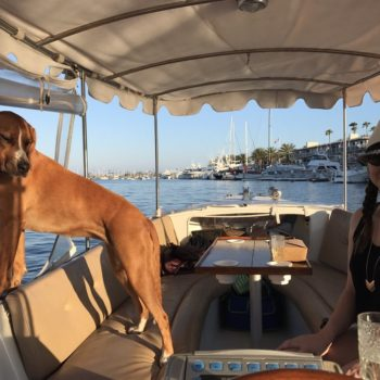 Electric Boat Rental in Newport Beach